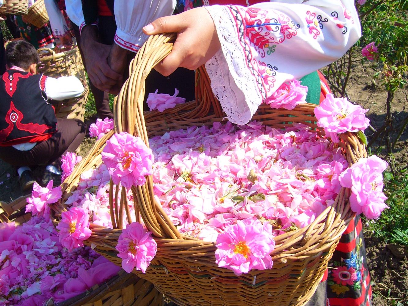 Rose Festival in Kazanlak, Bulgaria 2017